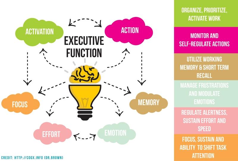 ExecutiveFunction-ewebster-1